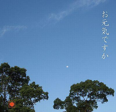 sokIMG_4614秋晴れ.jpg